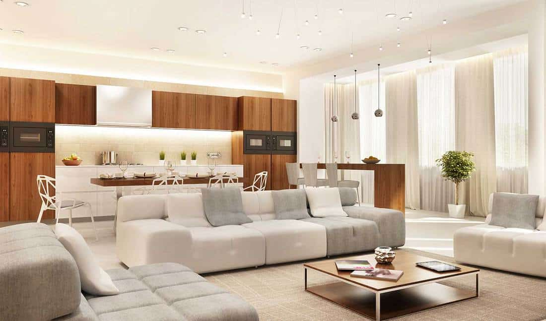 Modern design kitchen and large living room with cozy sofa set and coffee table