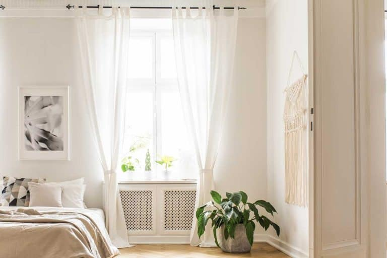 Spacious and bright bedroom interior with beige decorations, hardwood floor and house plant, Do Curtains Always Come in Pairs?