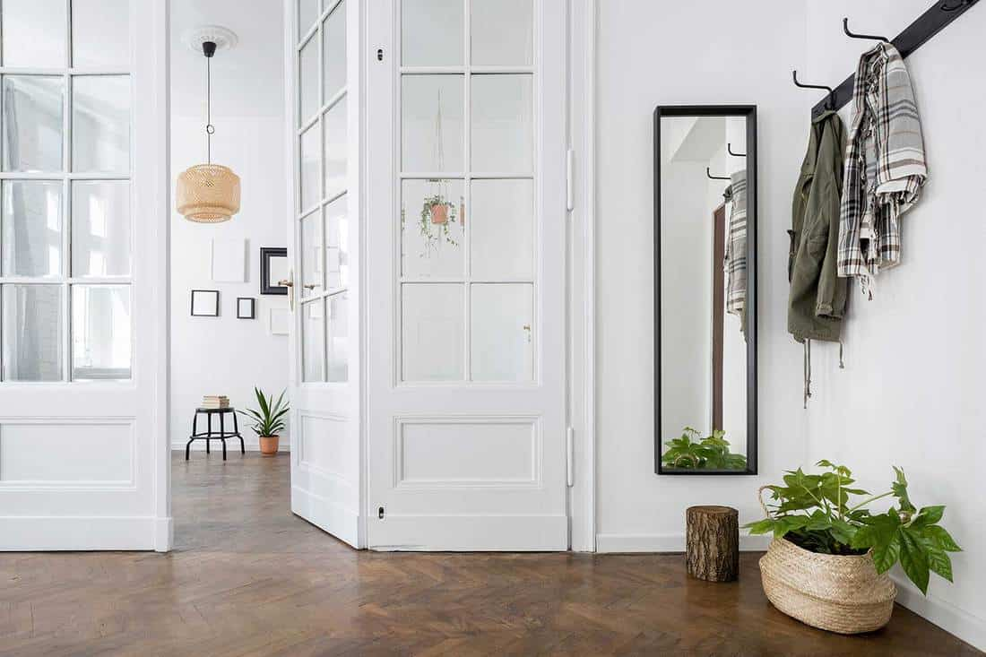 Spacious and stylish home interior with white glass door and wooden parquet