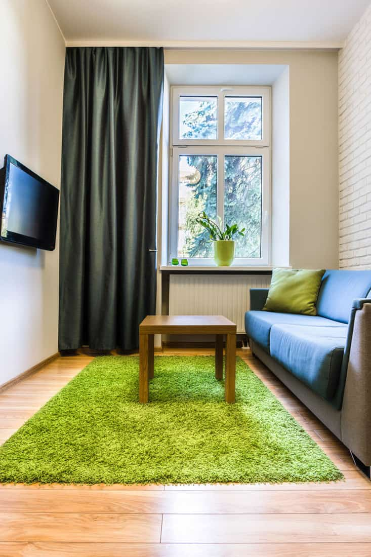 Vibrant small living room with green rugh and dark colored curtains