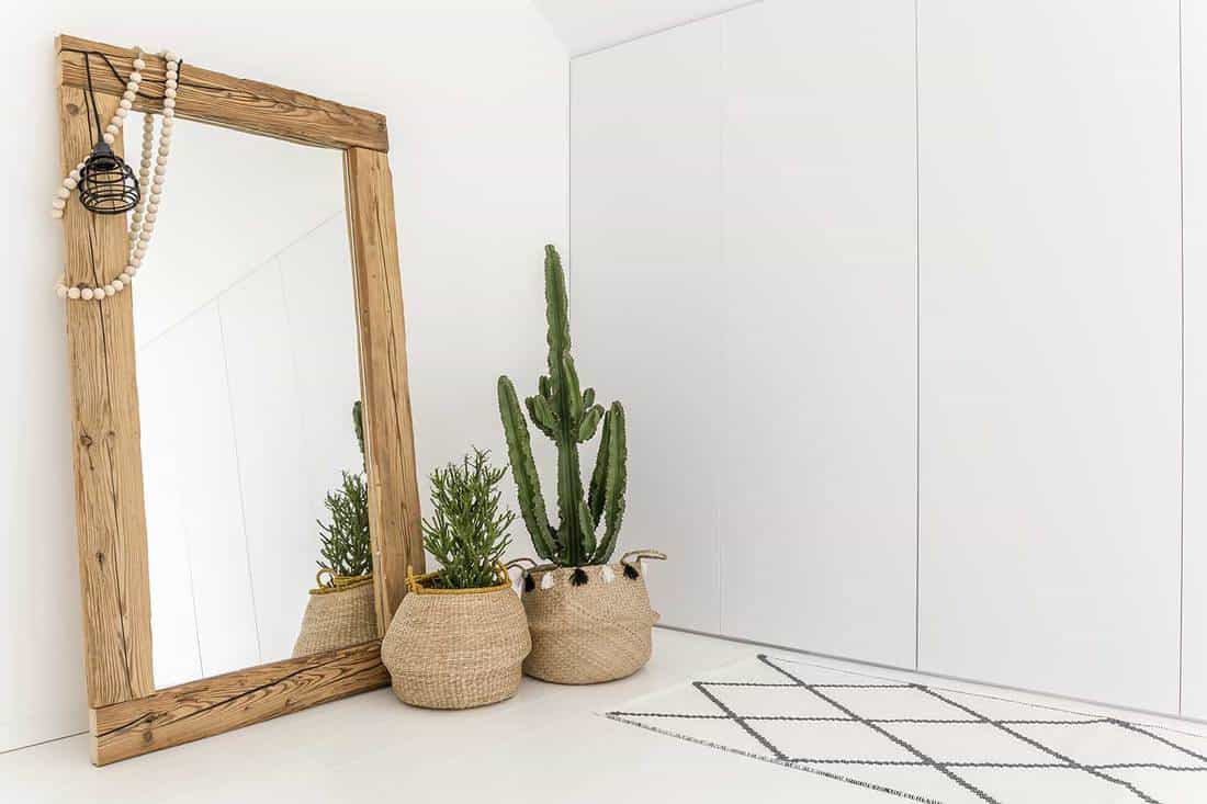 White room with mirror with wooden frame and decorative cactus