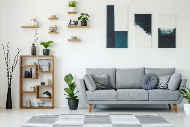 White wall with plants placed on dividers and cabinet and grey couch with blue paintings placed on wall, Should Every Wall In A Room Be Decorated?
