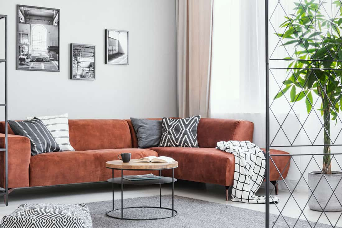 Throw pillows and blanket on brown velvet corner sofa in elegant living room interior, with gray rug and gray accents.