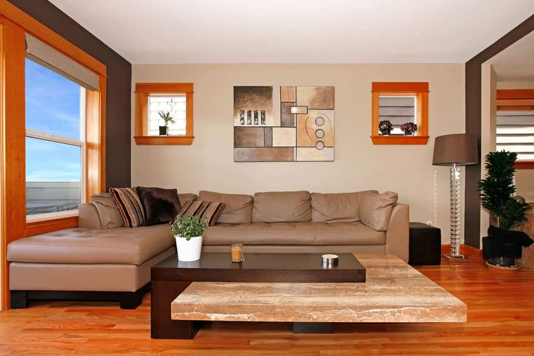Living room with modern table and brown colored sofa
