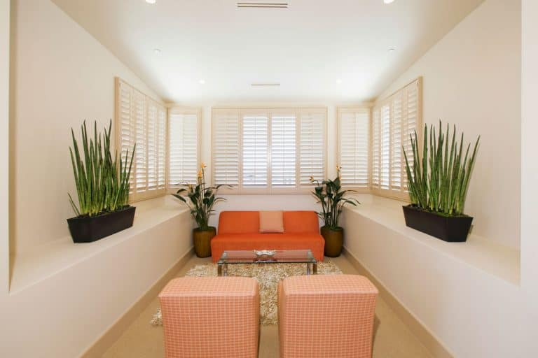 Orange inspired Narrow living room with houseplants, 17 Long Narrow Living Room Design Ideas
