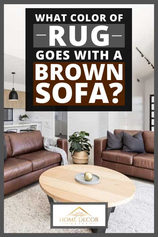 Scandinavian style kitchen and living room with rug and brown leather sofa, What Color of Rug Goes With a Brown Sofa?