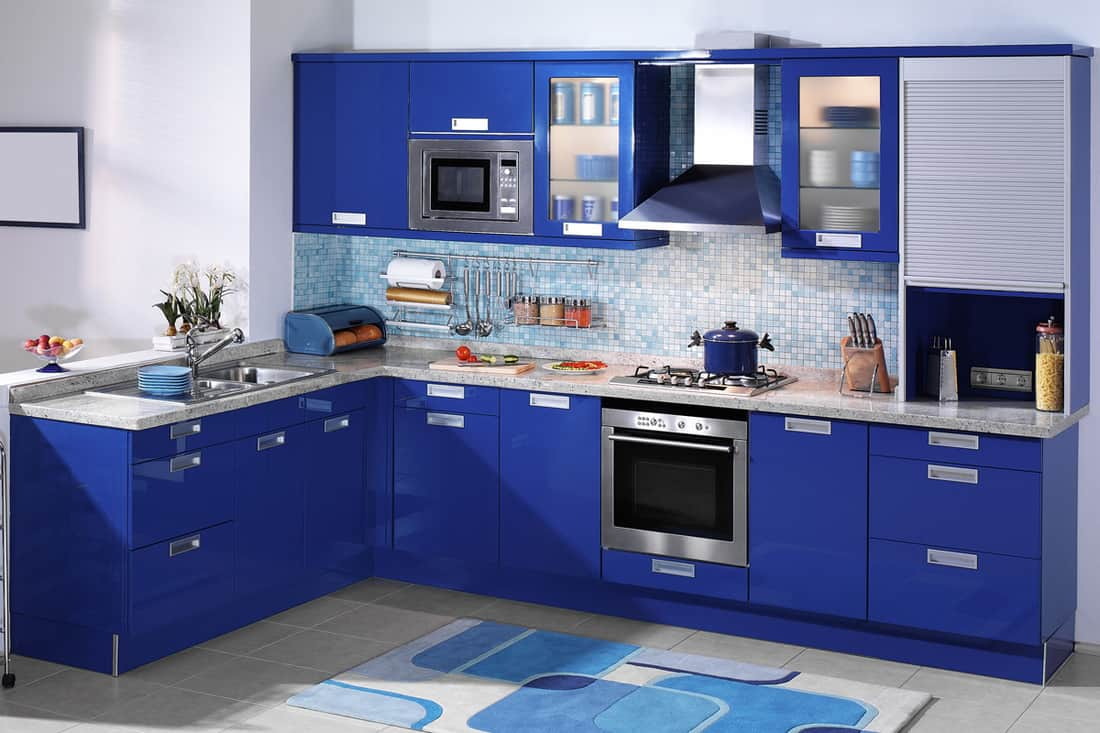 A blue themed kitchen with blue cabinets and blue walls