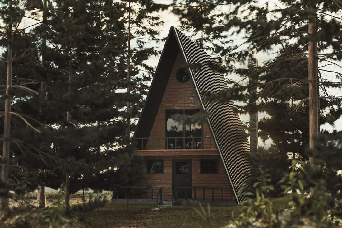 A triangular shaped house with a black door and a modern feel to the house