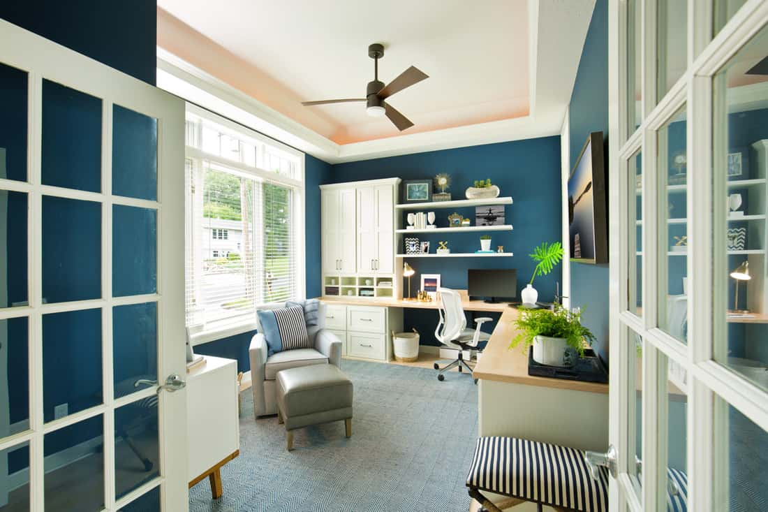 Blue walled study room with white colored ceilings, white cabinets, and dividers