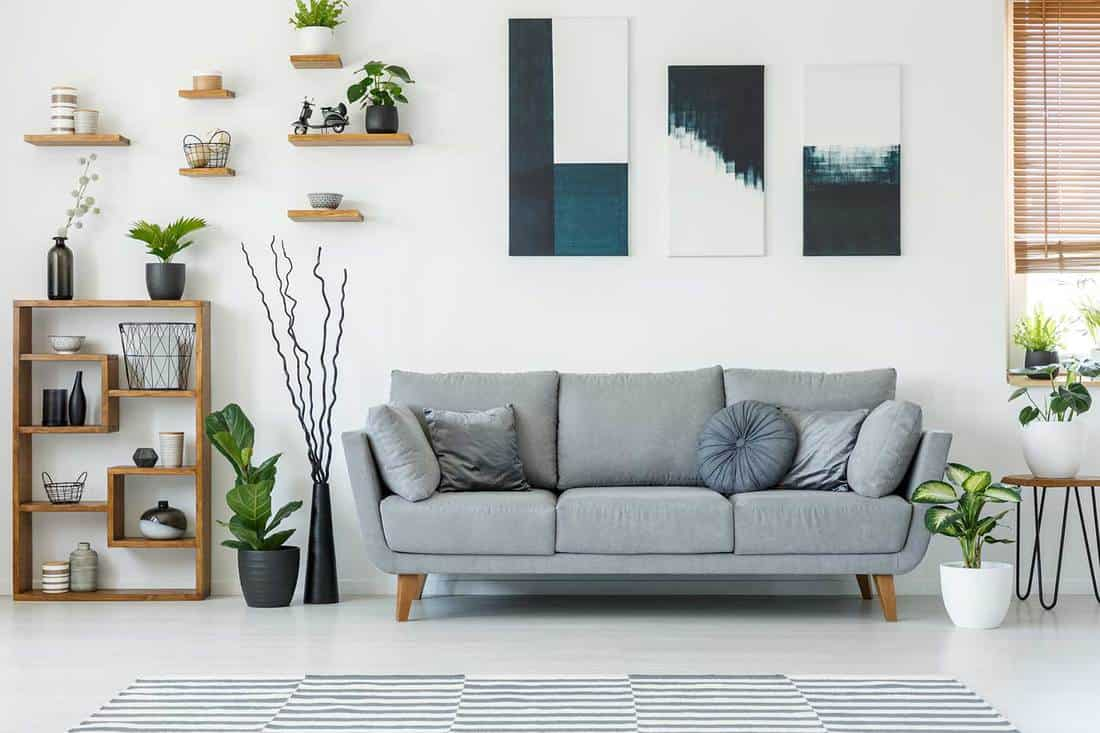 Elegant living room interior with a comfy couch, paintings and shelves