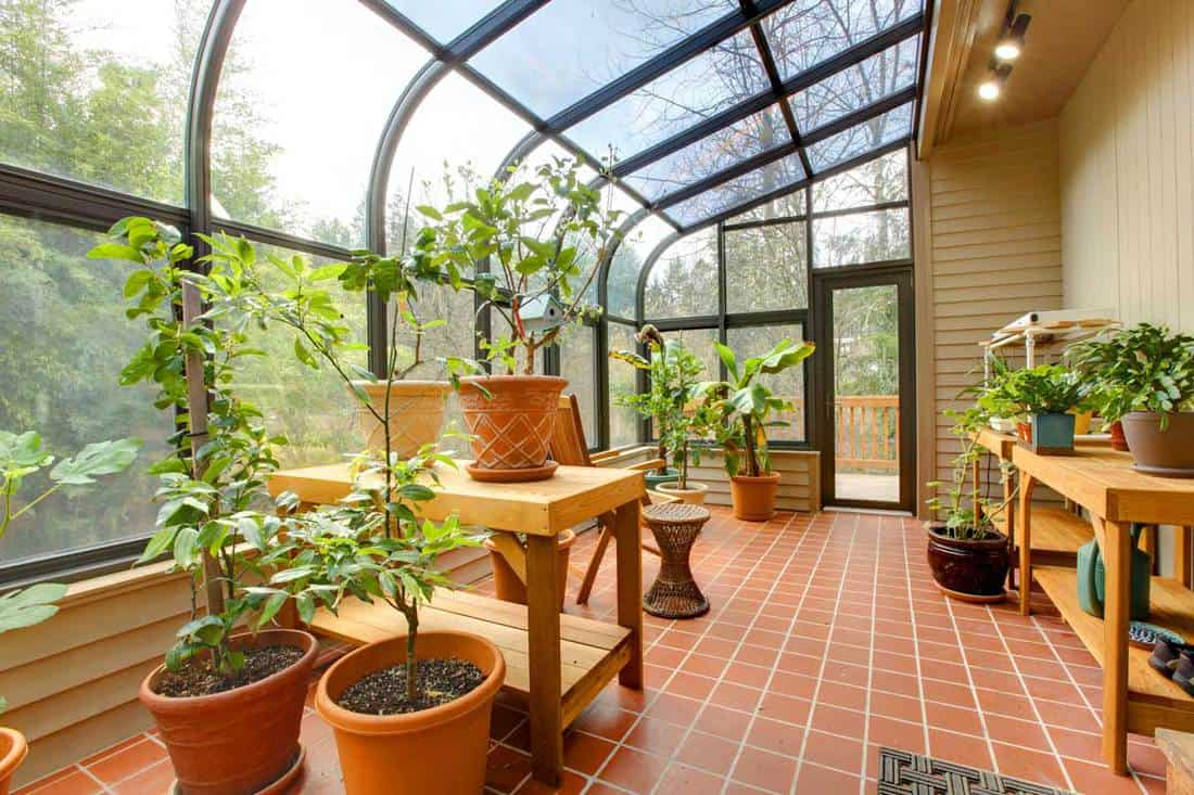 Garden room with glass covering extending to the roof