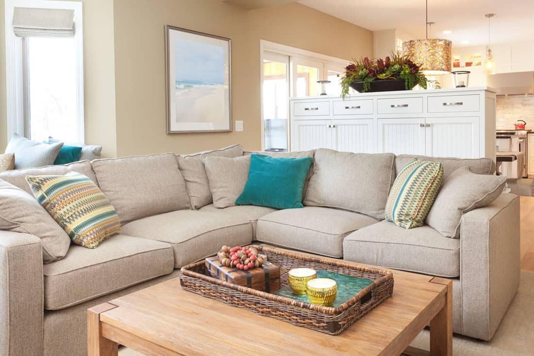 Gray colored couch with light brown colored walls