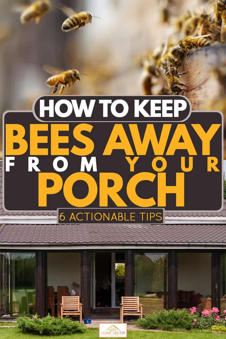 A modern house with shingled roofing and glass covered front porch, How To Keep Bees Away From Your Porch [6 Actionable Tips]