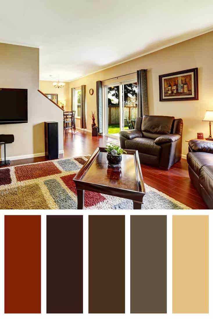 Living room interior with TV and colorful rug