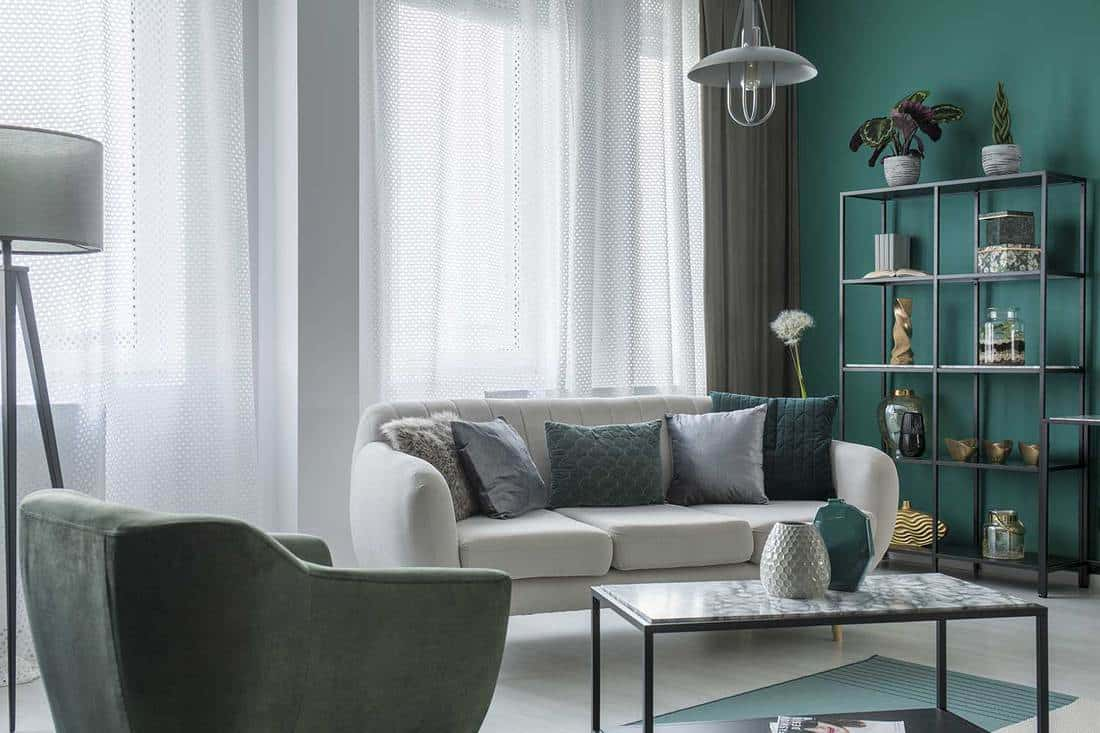 Pillows on sofa near armchair in flat living room interior with table and shelves against green wall