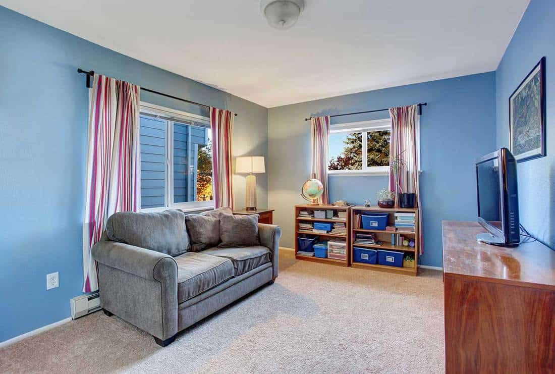 Secondary living room with blue walls