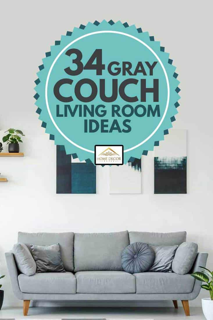 Elegant living room interior with grey sofa plants and paintings on the wall, 34 Gray Couch Living Room Ideas [Inc. Photos]