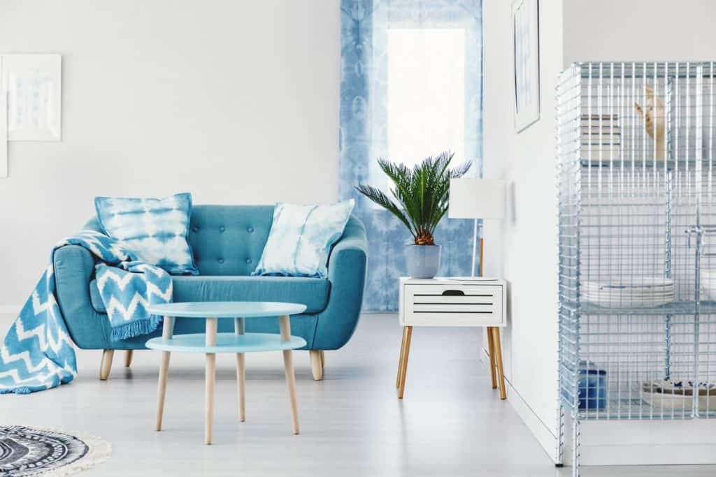 A blue colored couch in a living room with white colored walls and flooring