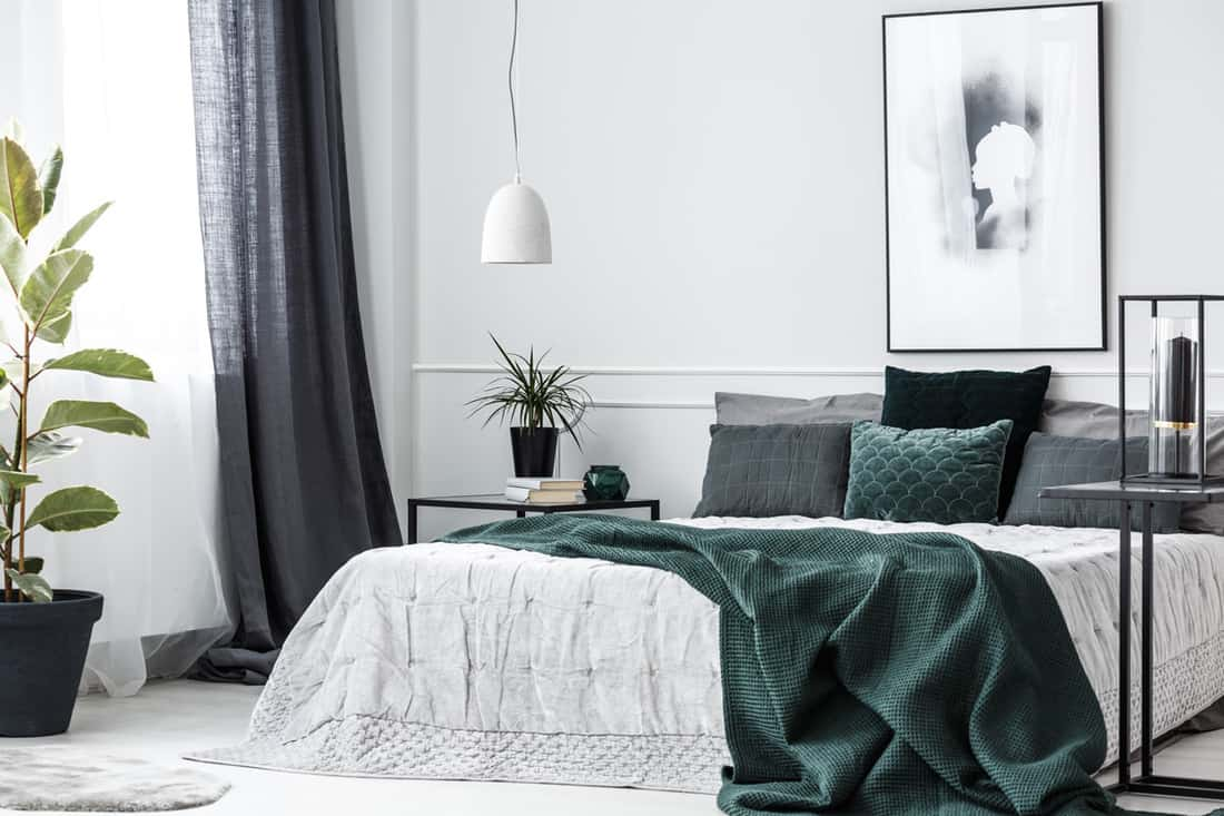 A modern bedroom with a beautiful bedding set and a gray and white colored curtain