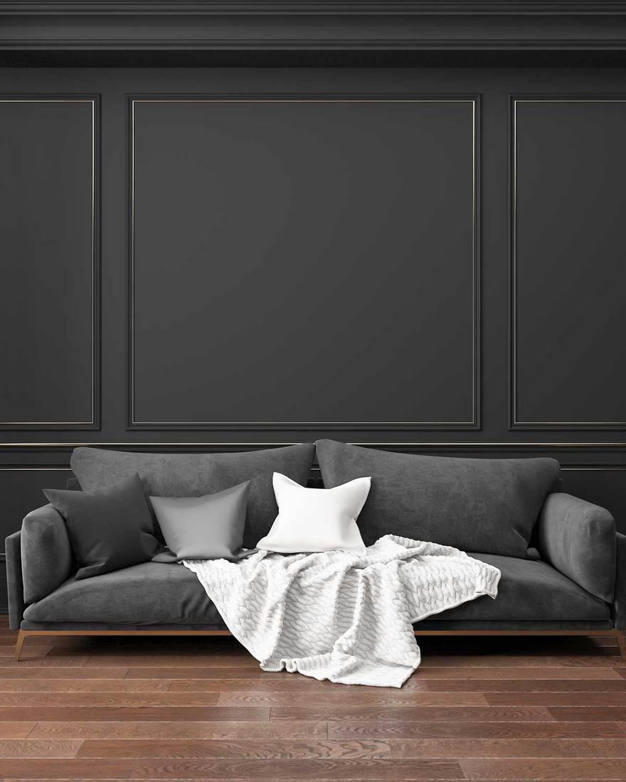 Classic black interior living room with sofa