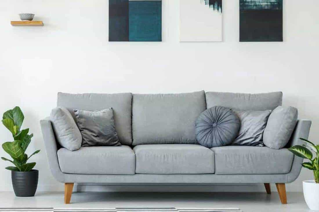 Picture of: 34 Gray Couch Living Room Ideas Inc Photos Home Decor Bliss