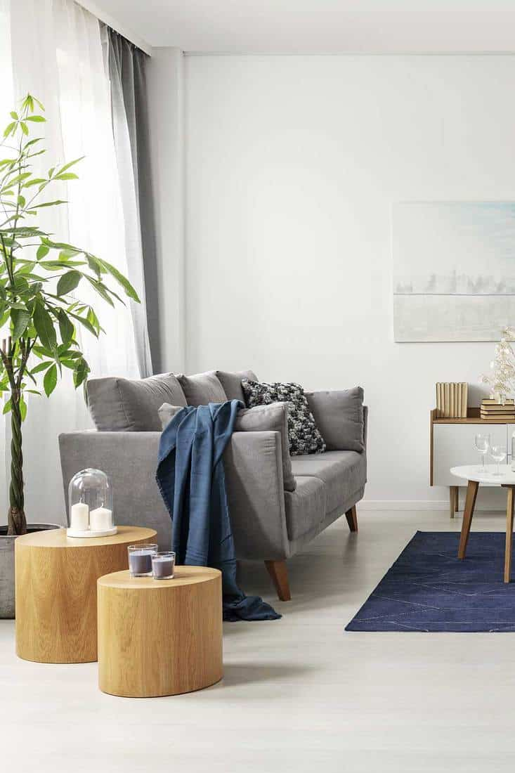 Grey and navy blue living room interior with comfortable sofa and coffee table