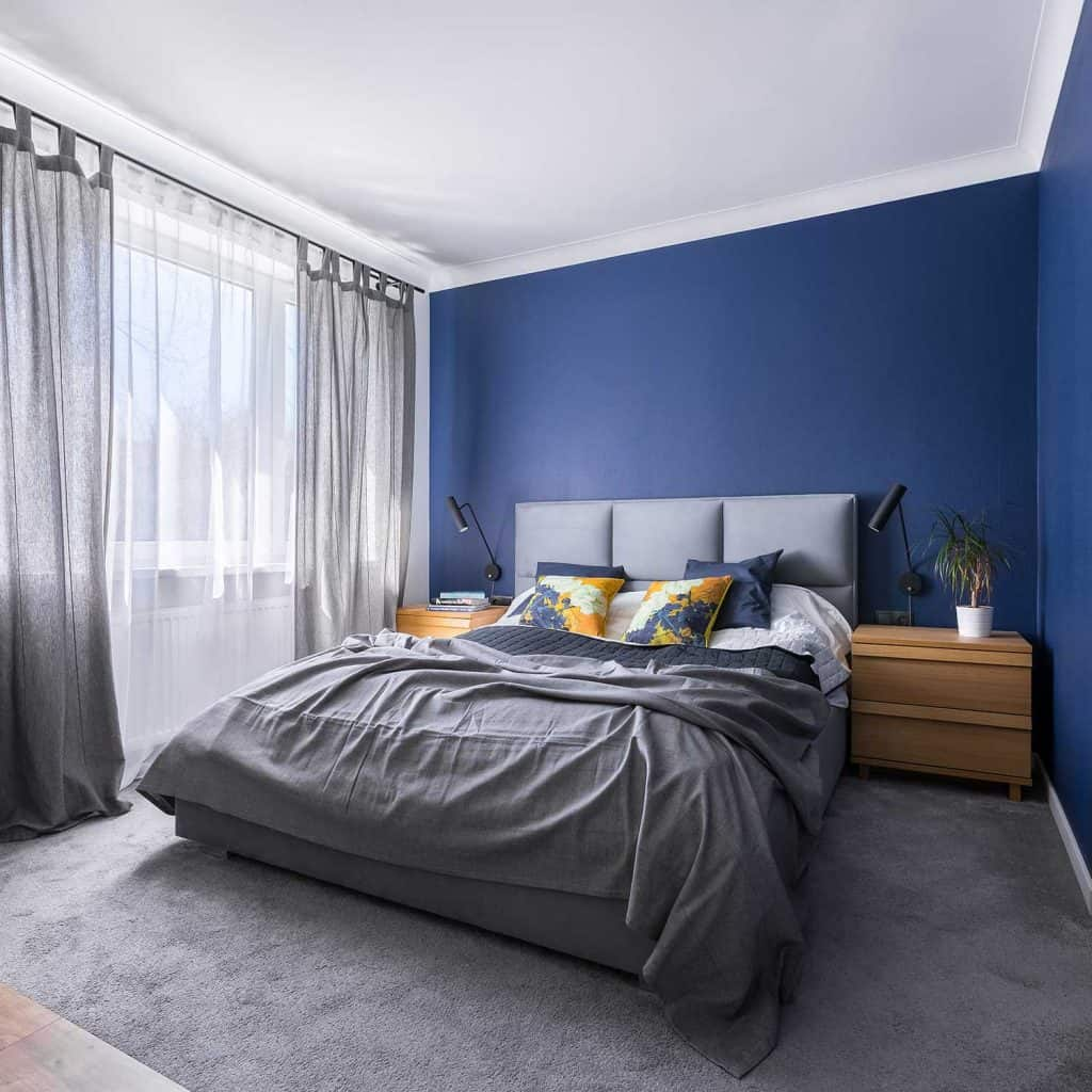 Modern cobalt blue bedroom with double bed, gray bedding, carpet and window