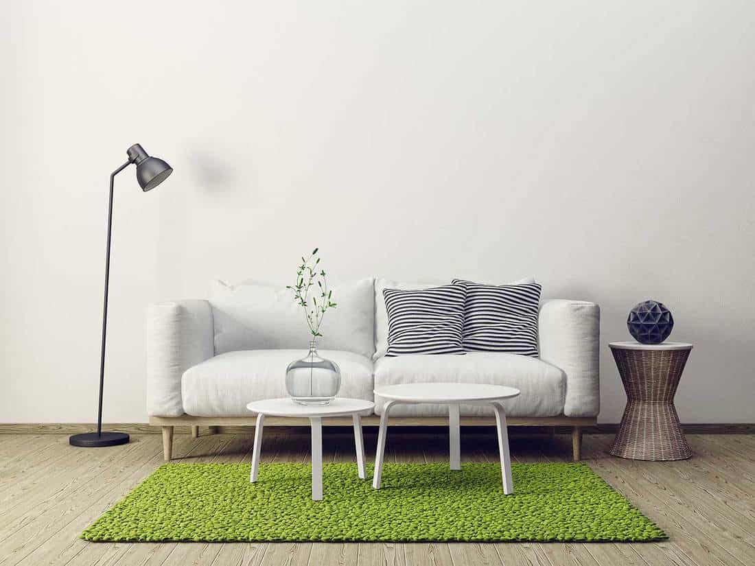 Modern living room interior with white sofa, green rug and hardwood floor