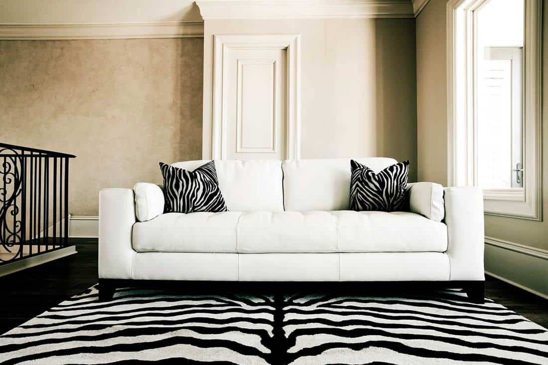 Modern living room interior with white sofa, zebra printed rug and throw pillows