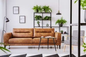 Read more about the article 15 Gorgeous Chocolate Brown Couches [Inc. Design Tips!]