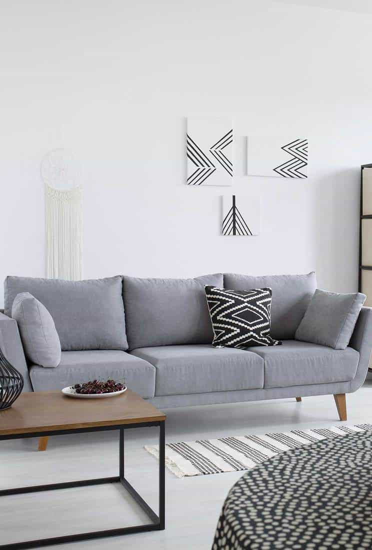 Scandinavian living room with grey sofa and coffee table