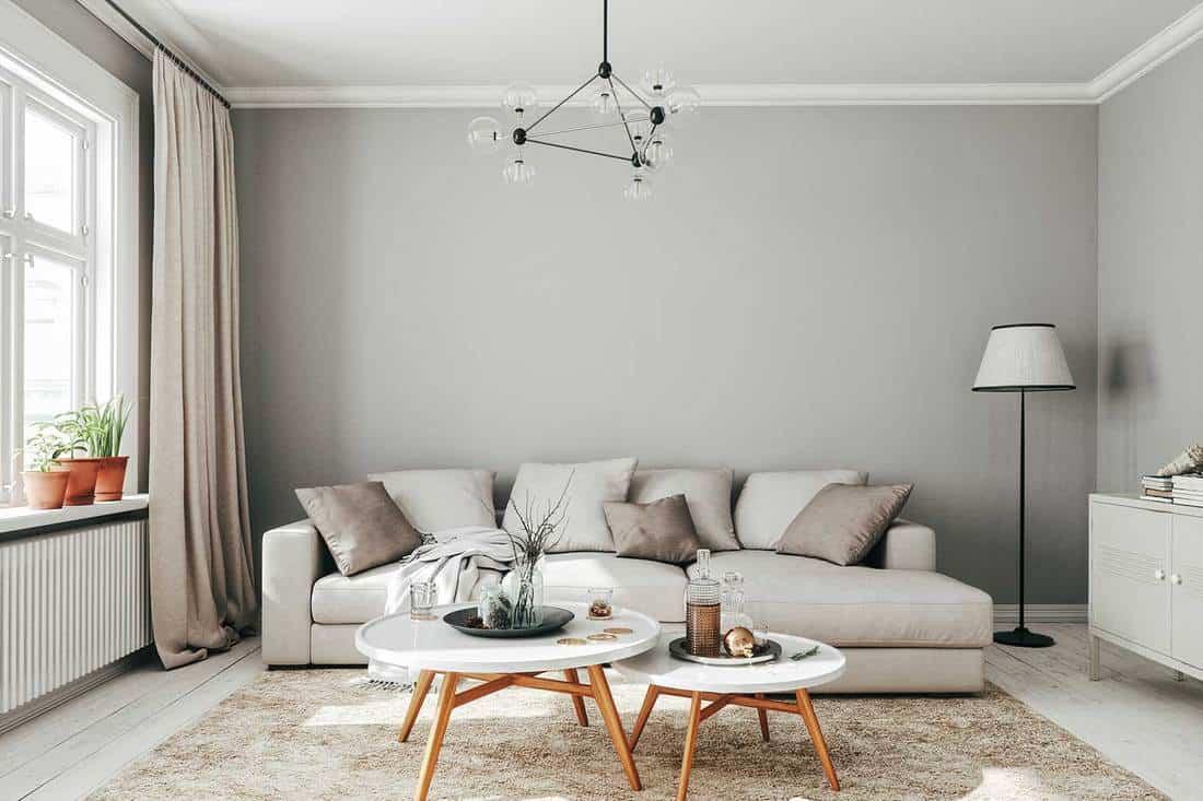 Scandinavian style living room interior design