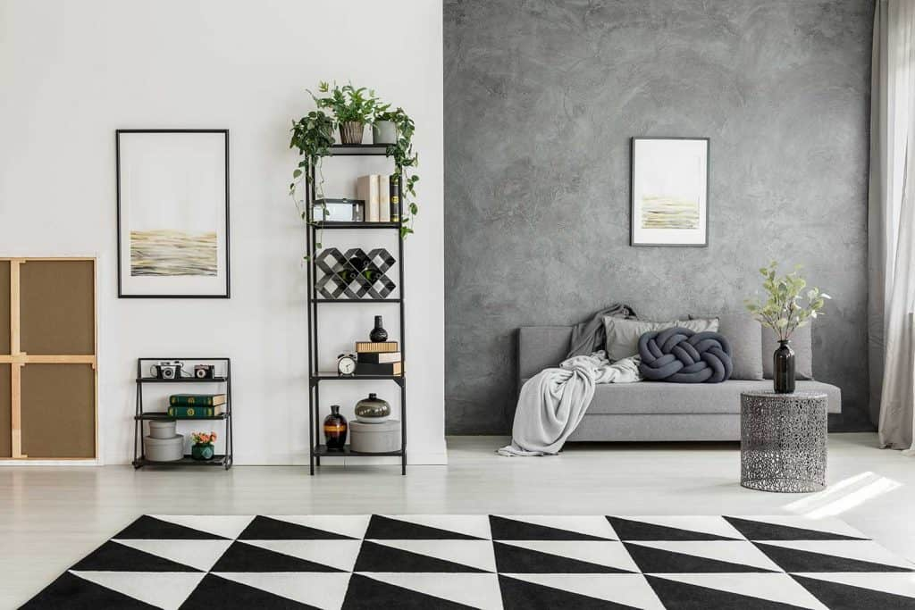 Black and white carpet in spacious living room with shelves, posters, gray sofa and house plants and contrast color walls