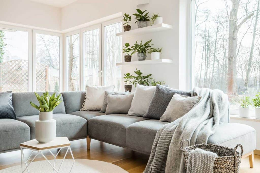 Gray corner couch with pillows and blankets in white living room interior with windows and glass door and fresh tulips on end table