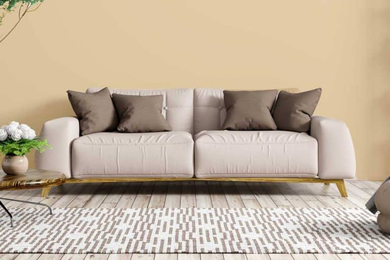 Modern interior of apartment, living room with beige sofa, coffee table, rug and shelf and beige wall, What Color Carpet Goes With Beige Walls? [6 Options Reviewed]