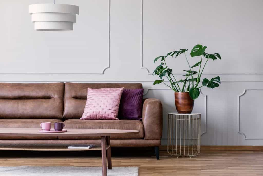 Plant next to leather couch with pink pillow in white flat interior with lamp above table