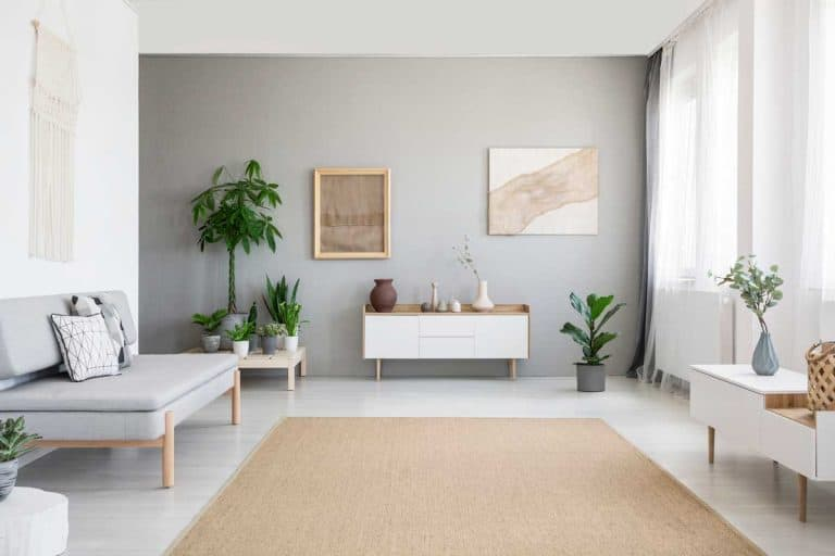 Posters on grey wall above white cupboard in bright living room interior with sofa and beige carpet, What Carpet Goes With Gray Walls? [6 Top Choices]