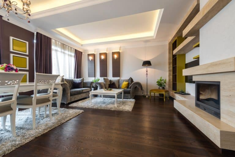 A luxurious modern living room with dark wooden flooring, comfortable gray couch, and white antique chairs, What Color Wood Floor Should You Choose?