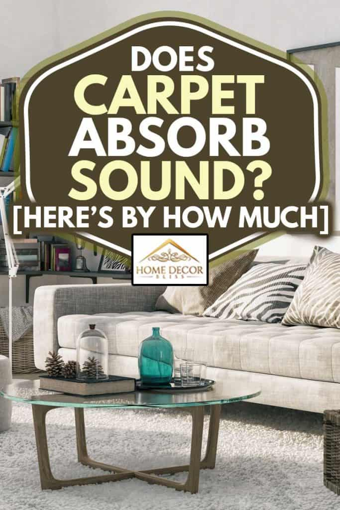 A cozy living room with corner bookshelf and a carpet, Does Carpet Absorb Sound? [Here's by How Much]