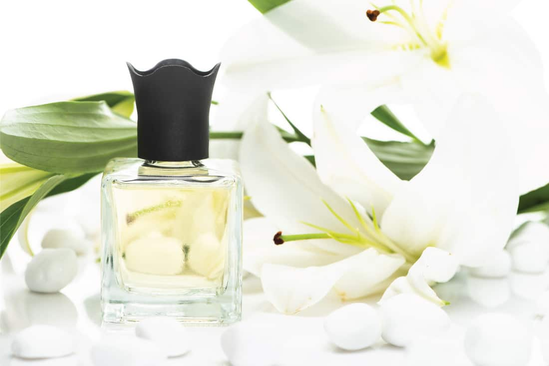 Home perfume in bottle near spa stones and lilies