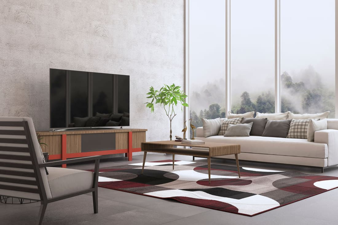 Interior design of the modern living room with colored carpet and a TV