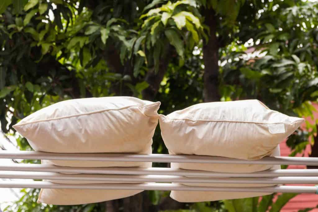 Leaving pillows outside in the sun to dry