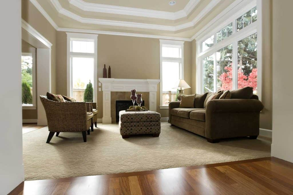 New luxury living room interior with couch, fireplace and carpet on wooden floor