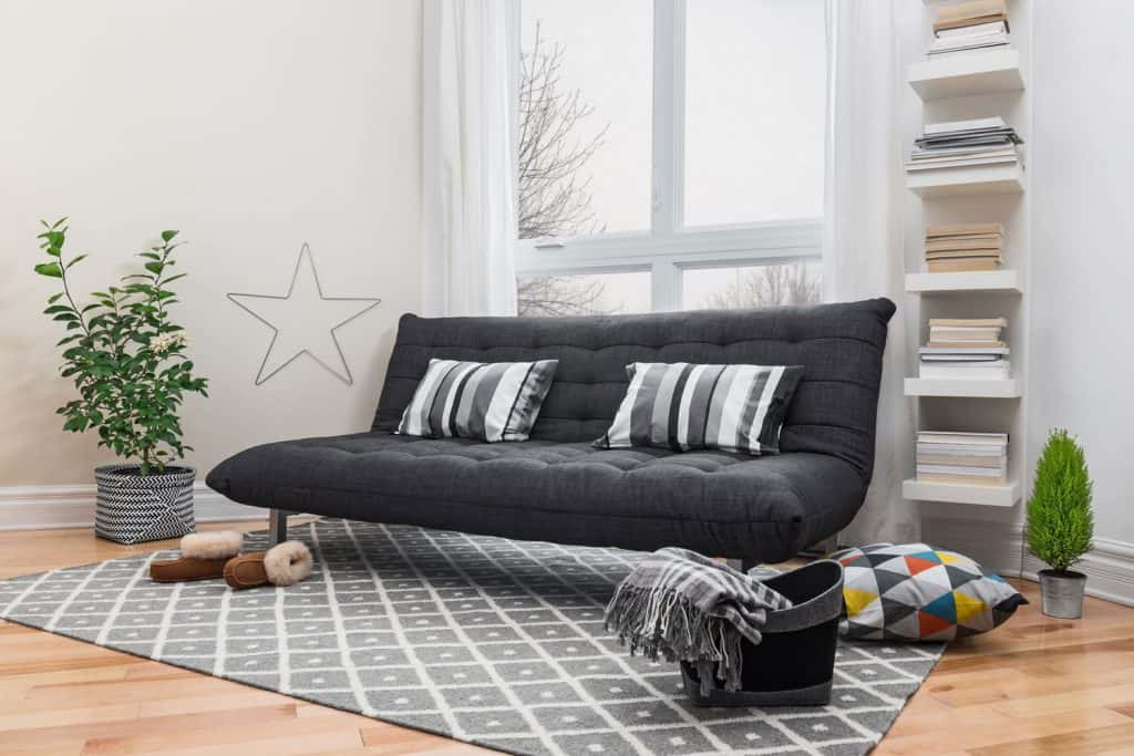 Spacious living room with matching carpet and futon