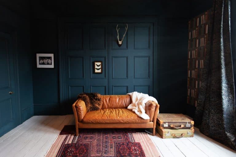 A dark blue painted study room with a leather sofa, bookshelf, and a rug on the middle, Does Leather Furniture Make You Sweat?