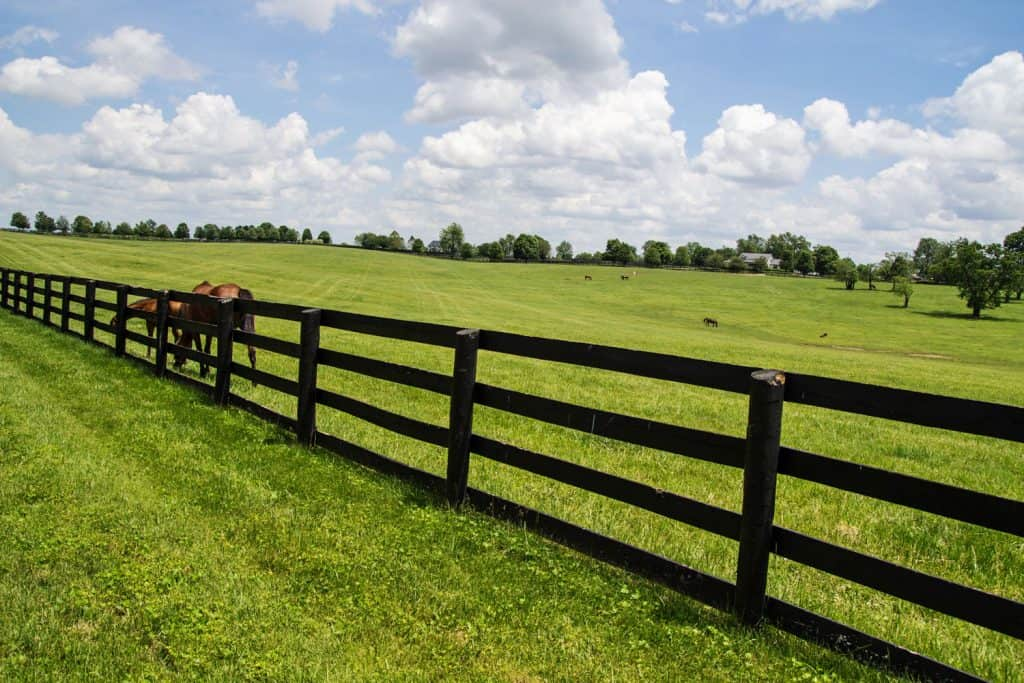 A dark color painted fence of a wide ranch