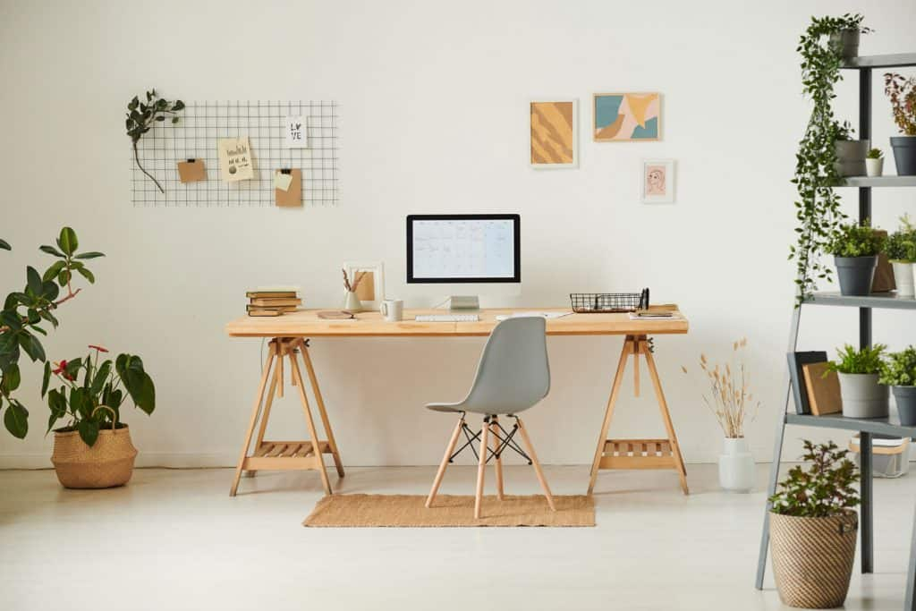 A gorgeous office area with indoor plants on the sides and a wooden working table