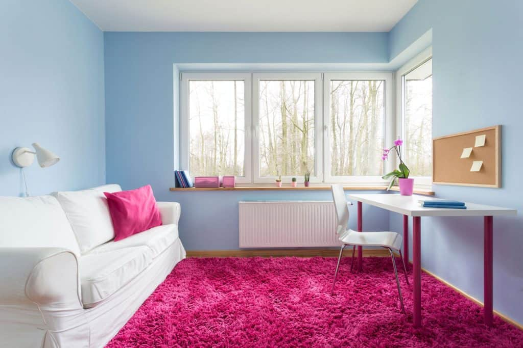 A small narrow living room with blue walls, huge window, and a pink carpet incorporate with a white couch