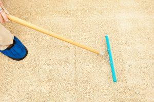 5 Best Carpet Rakes To Fluff Carpet