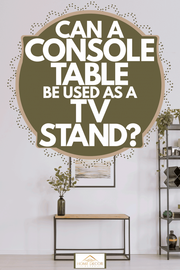 A small living room with a brick and plain white painted wall with a console table and an indoor plant on it, Can A Console Table Be Used As A TV Stand?